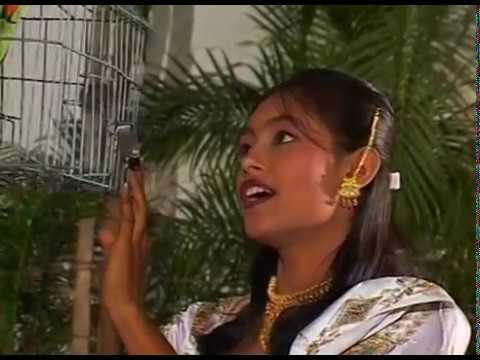 कहान सुवना जनम लिये - Kahan Suvna Janam Liye | Jhan Aabe Bhule Hamar Para | CG Video Song