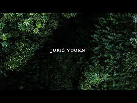 Joris Voorn - Café d'Anvers/Warung  Brazil 2018 ID (Ripped from Spectrum Radio 046)
