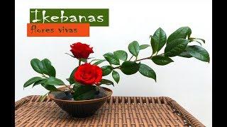 Ikebana, flores vivas