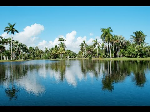 Top 12. Best Tourist Attractions in Coral Gables, Florida