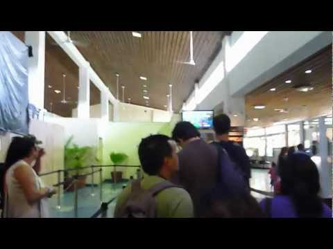 Juergen Schreiter going Vanuatu | Vanuatu Imigration at  Port Vila Airport
