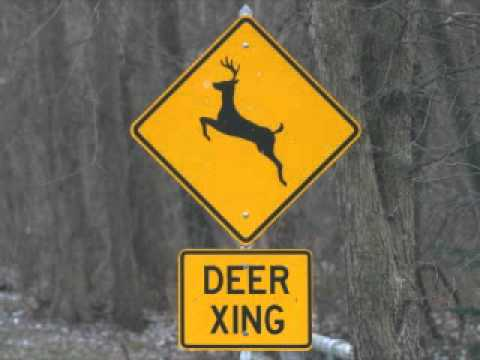 Stupid woman on deer crossing signs youtube for The sign