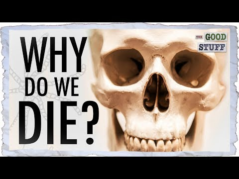 Why Do We Die??