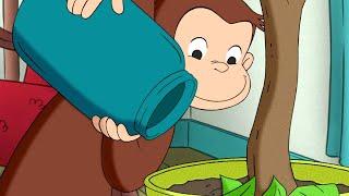 Jorge el Curioso en Español La Utilidad de una Palanca Mono Jorge Caricaturas para Niños