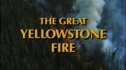 The Great Yellowstone Fire (1990)