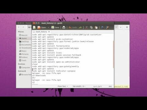 Delete Terminal History - Ubuntu 13.04