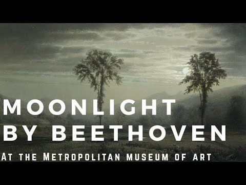[Music+Art Together] If Beethoven Goes To The MET In The MOONLIGHT/Moonlight Sonata/Piano