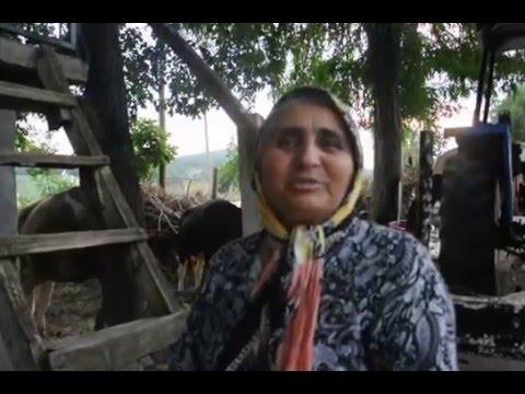 Datça'ya giden meşhur Osmaniyeli dobra teyze II. video