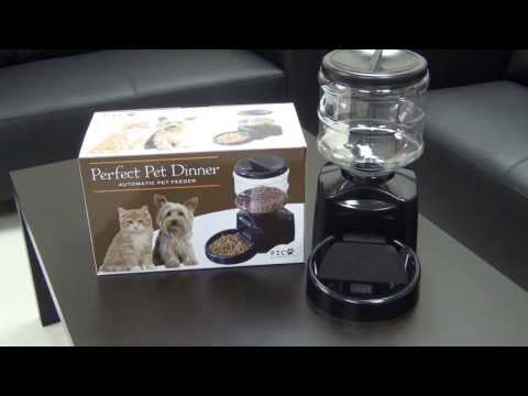 PICO Perfect Dinner Automatic Pet Feeder Review
