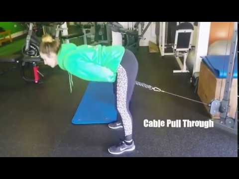 Cable Pull Through Exercise for Glutes