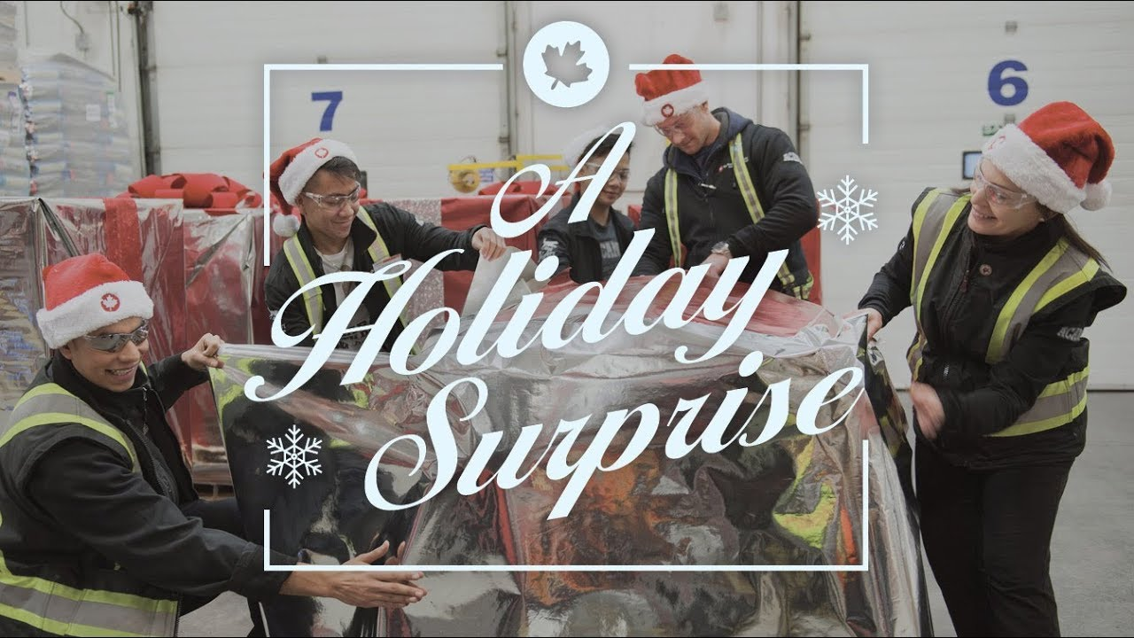 Christmas Comes Early for Rescues • Champion Petfoods