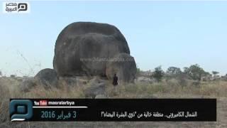 مصر العربية | الشمال الكاميروني.. منطقة خالية من