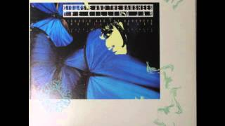 Siouxsie and the Banshees - The Killing Jar (Lepidopteristic Mix) (1988) (Audio)