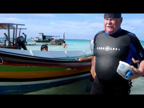 Go Nias Tour Underwater Experience with Knutch and Helga From Germany