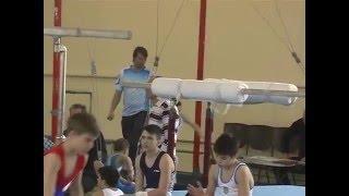 2-й разряд кольца. Спортивная гимнастика мужчины 10,5 лет.