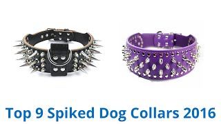 9 Best Spiked Dog Collars 2016