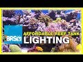 FAQ #37: What's the most affordable lighting system for a reef tank? | #52FAQ
