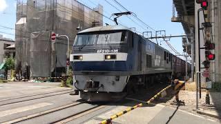 EF210-136 貨物列車 北方貨物線にて 2017/08/06