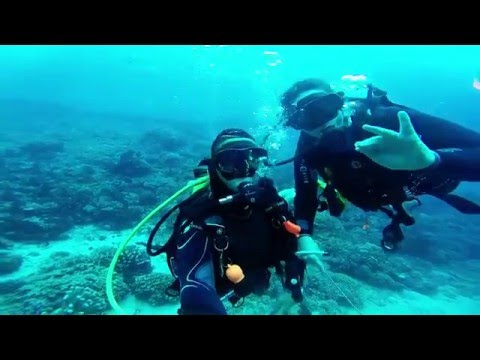Diving on Bunaken Island, North Sulawesi, Indonesia (January 2016)