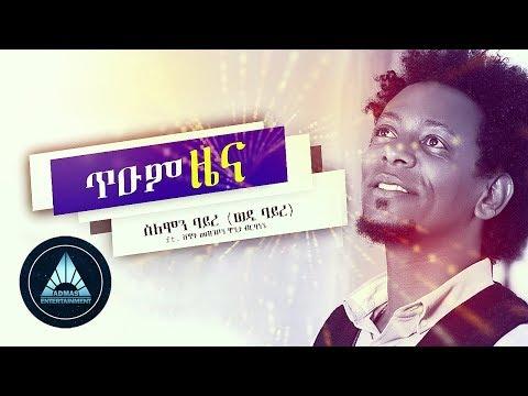 Solomon Bayre - Tium Zena (Official Audio)   Ethiopian Tigrigna Music