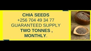 Chia Seed : Bulk-buy Chia Seed, direct , from farmer, now +256704493477
