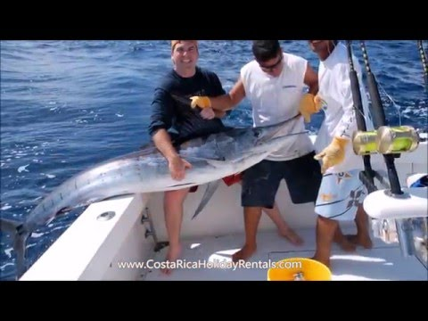 Costa Rica Sport Fishing Jaco http:www.CostaRicaHolidayRentals.com