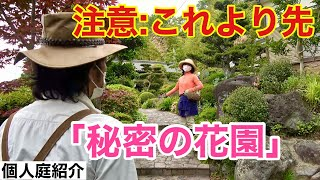 話題の庭を公開します     【カーメン君】【個人庭】【秘密の花園】【bluemooncottage】