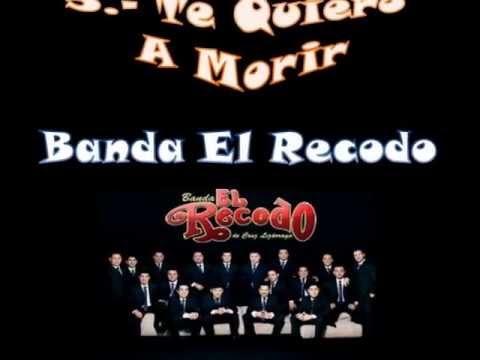 O Bisonte Banda Las 10 Mejores ...
