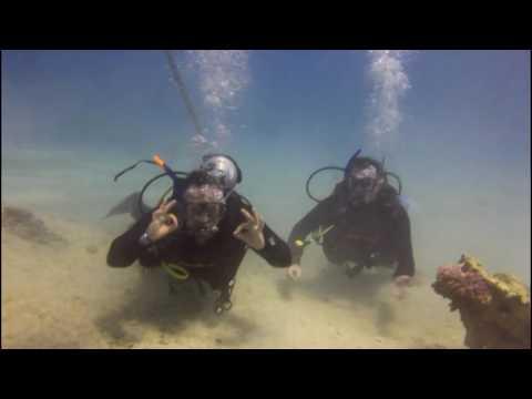 Red Sea Scuba Dive Hurghada Egypt 2017