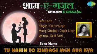 Tu Nahin To Zindagi Men Aur Kya | Shaam-E-Ghazal | Arth | Chitra Singh