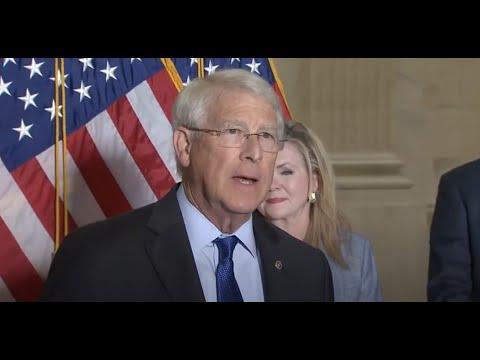 Amerikai szenátorok vizsgálatot indítanak a vírus eredete, dr. Fauci és a Big Tech-cenzúra ügyében