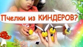 ПЧЕЛКИ ИЗ ЯИЦ Киндера. Киндеры Кунг-Фу Панда . Видео для детей.