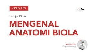 Belajar Biola : Mengenal Anatomi Biola - Ivan Luthfi
