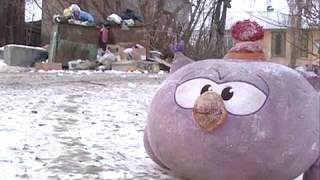 В частном секторе Красноярска не вывозят мусор