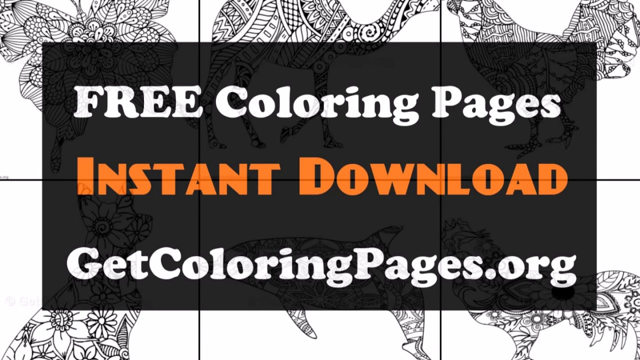 graphic relating to Free Printable Zentangle Worksheets named Free of charge printable zentangle worksheets