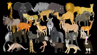 African Animals - The Kids' Picture Show (Fun & Educational Learning Video)