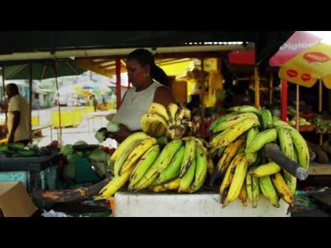 Organic Agriculture in Dominica - Chemonics International