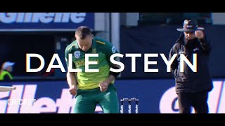 Steyn joins the Stars in the Big Bash League