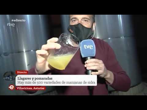 VÍDEO España de Directo, de TVE, en una pumarada de Villaviciosa