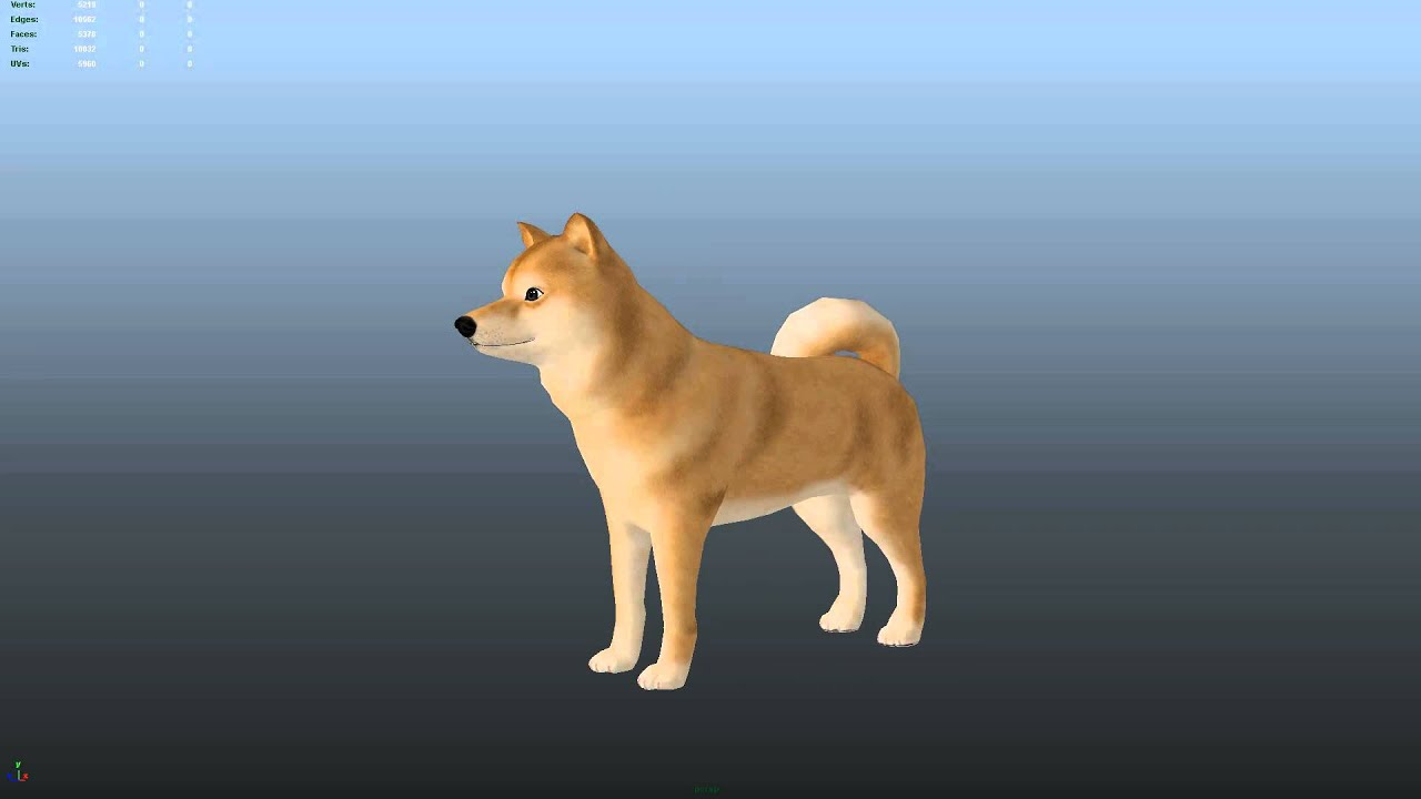 3d Moving Wallpaper Pictures Doge 3d Model Idle Animation Youtube