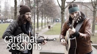 The Avett Brothers - Laundry Room - CARDINAL SESSIONS
