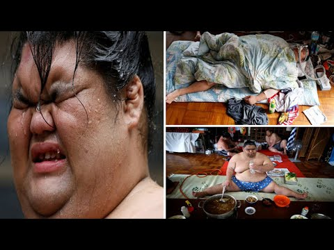 Japan's sumo wrestlers eating 8000 calories a day and wearing oxygen masks while napping