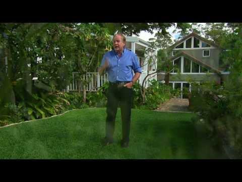 Graham Ross grows 'Kings Pride' turf at his home