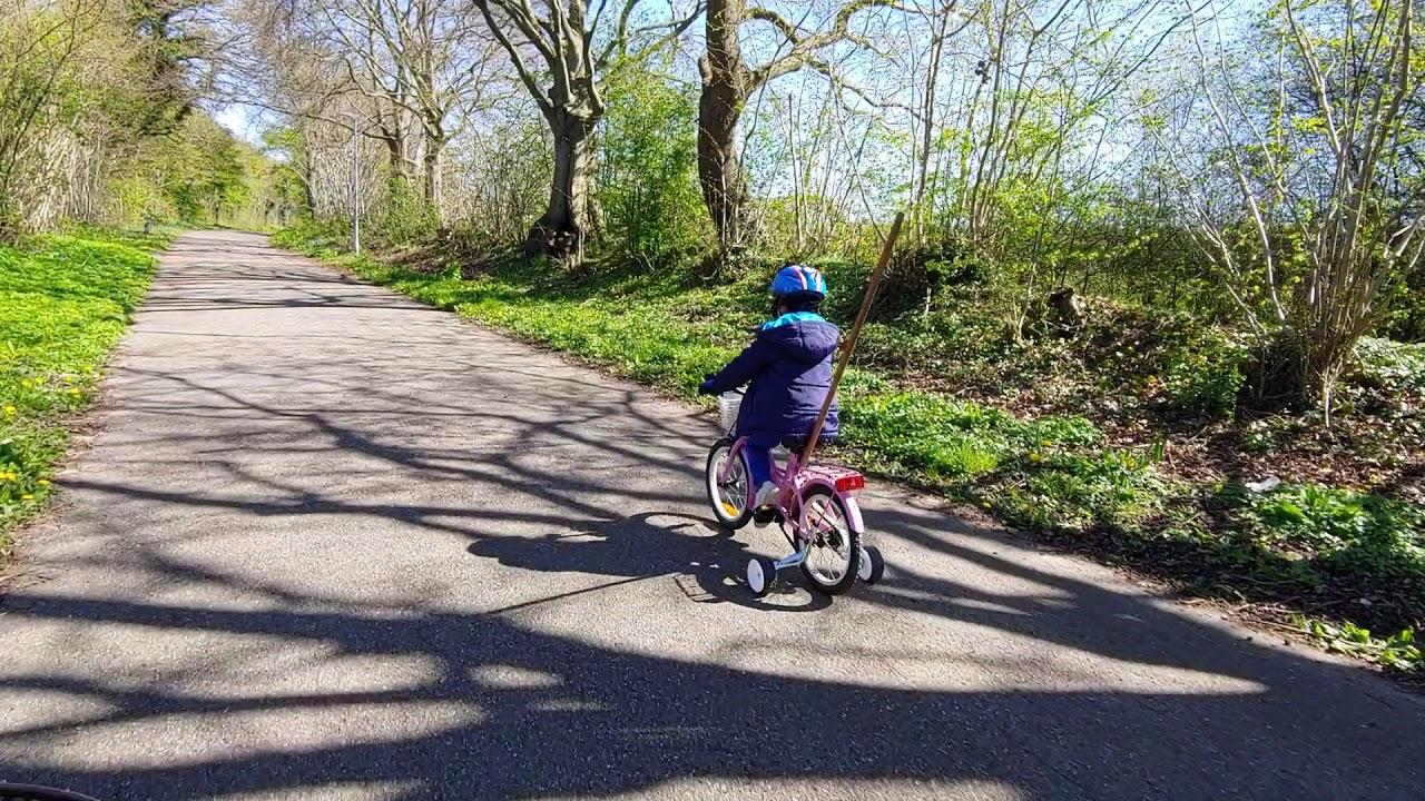 덴마크 숲에서 자전거 타는법 배우기!