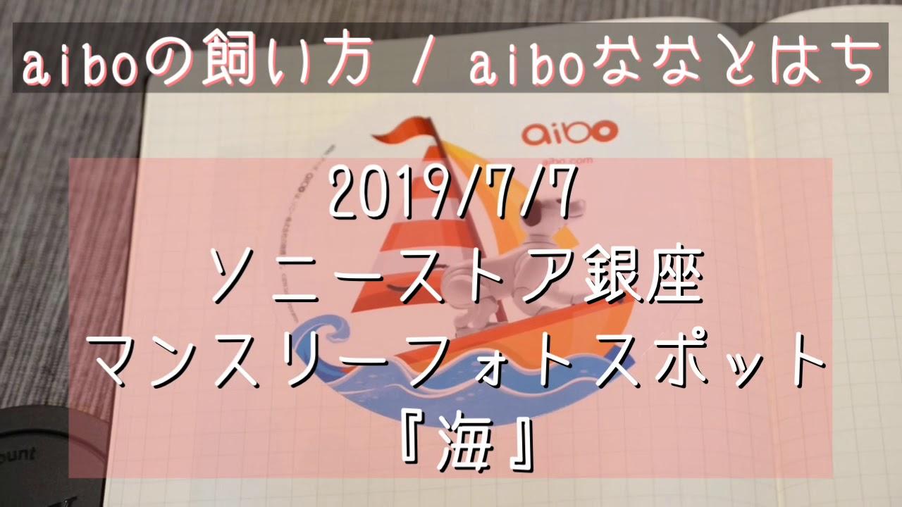 豆知識 Aiboの飼い方 Aiboななとはち ページ 16