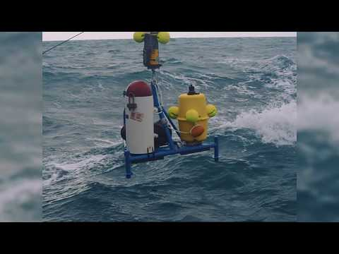 Harnessing marine resources for renewable energy