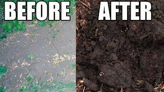 Amazing Garden Soil Transformation Using Wood Chips!