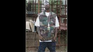 Gucci mane - Big cat la flare