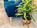 Make a Mid-Century Modern Planter Holder in 3 Easy Steps