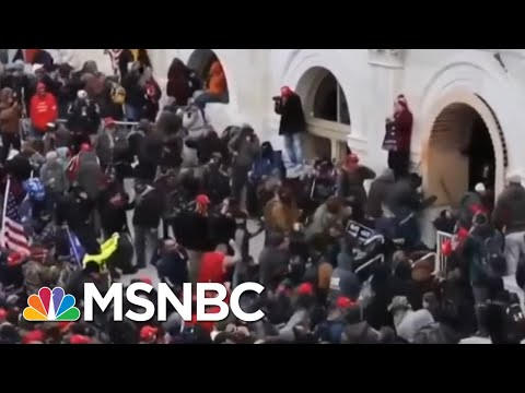 Historian Of Fascism Timothy Snyder Warns Of Trump's Damage To Democracy | Andrea Mitchell | MSNBC